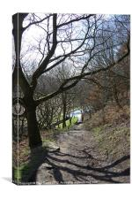 Woodland View - Huddersfield Narrow Canal, Canvas Print