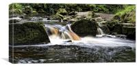 Mallyan Spout Yorkshire, Canvas Print
