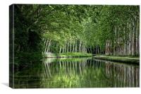 Canal du Midi, Canvas Print