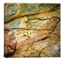 Painted by Nature, Canvas Print