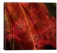 Touch of The Orient, Canvas Print