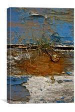 Old Boat - Peeling Paint, Canvas Print