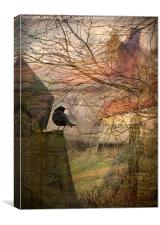 Blackbird, Canvas Print