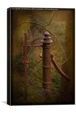 Old Gatepost, Canvas Print