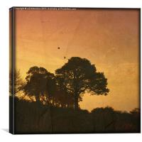 The Rookery (textured), Canvas Print