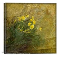 Spring Time, Canvas Print