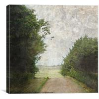 The Watchful Hare, Canvas Print