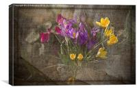 Springtime Flowers, Canvas Print