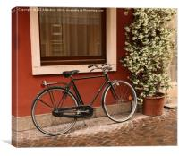 The Bicycle , Canvas Print