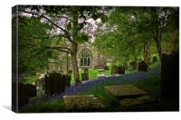 Bluebells at Fewston Church, Canvas Print