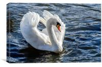 White Swan Photo, Canvas Print