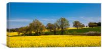 Spring in the Countryside, Canvas Print