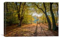 Dawn in Epping Forest, Canvas Print