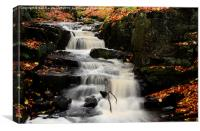 Lumsdale falls , Canvas Print