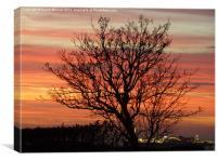 Brighton sunset, Canvas Print