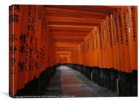 Fushimi Torii Gates Kyoto Japan, Canvas Print