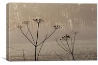 winter foliage, Canvas Print