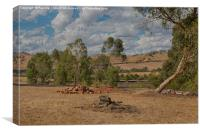 Landscape at Strath Creek, Victoria, Canvas Print