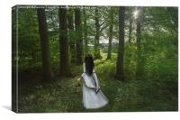 A walk in the woods, Canvas Print