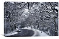 Mousehold heath winter road England, Canvas Print