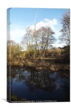 River reflection, Canvas Print
