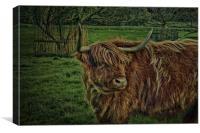 Highland, Canvas Print