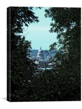 St Paul's In The Trees, Canvas Print