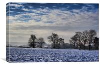 Snow On The Downs, Canvas Print