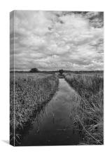 On The Broads, Canvas Print