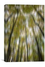 Blurred Trees, Canvas Print