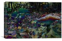Fairies Playground, Canvas Print