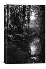 Puddle At The Roadside, Canvas Print