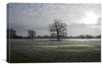 Frost In The Weald, Canvas Print