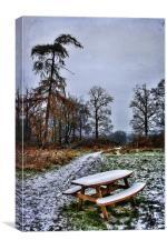 Frozen Bench, Canvas Print