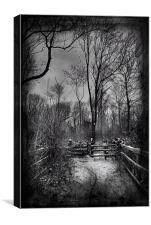 North Downs Way In The Snow, Canvas Print