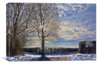 Mid Winter Sun, Canvas Print