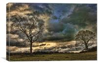 Two Trees, Canvas Print