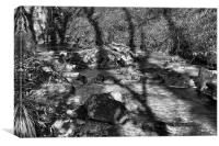 Shadows On The Stream, Canvas Print