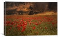 Field Of Fire, Canvas Print