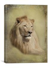 King, Canvas Print