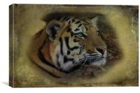 Ever Watchful, Canvas Print
