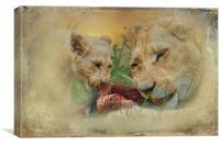 Sharing, Canvas Print
