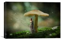 Gimme Shelter, Canvas Print