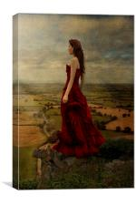 Overview, Canvas Print