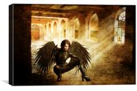 Desolation Angel, Canvas Print