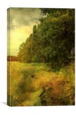 Stream At Teynham Street, Canvas Print