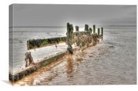 Seaweed and Sea Defences, Canvas Print