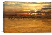Icklesham Sunrise, Canvas Print