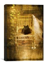 Cat On The Porch, Canvas Print