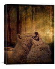 Playful In The Moonlight, Canvas Print